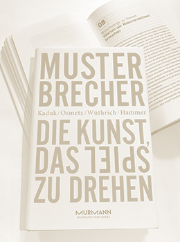 Musterbrecher-2013